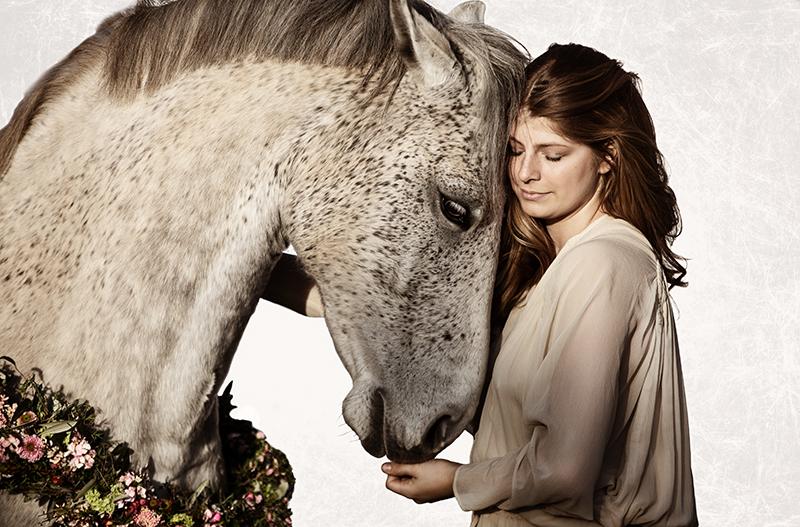 Pferd mit Kranz um den Hals vor weißem Hintergrund